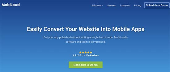 Convert WordPress Site with MobiLoud