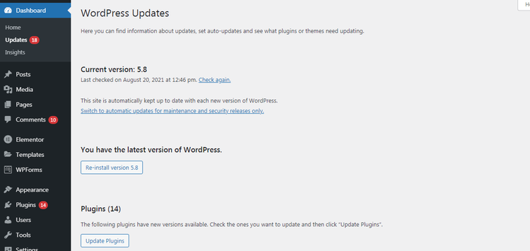 Maintain the latest versions of all themes and plugins