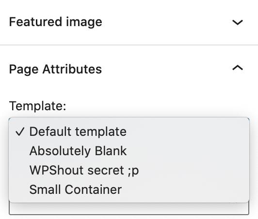 WordPress Theme Custom Page Template