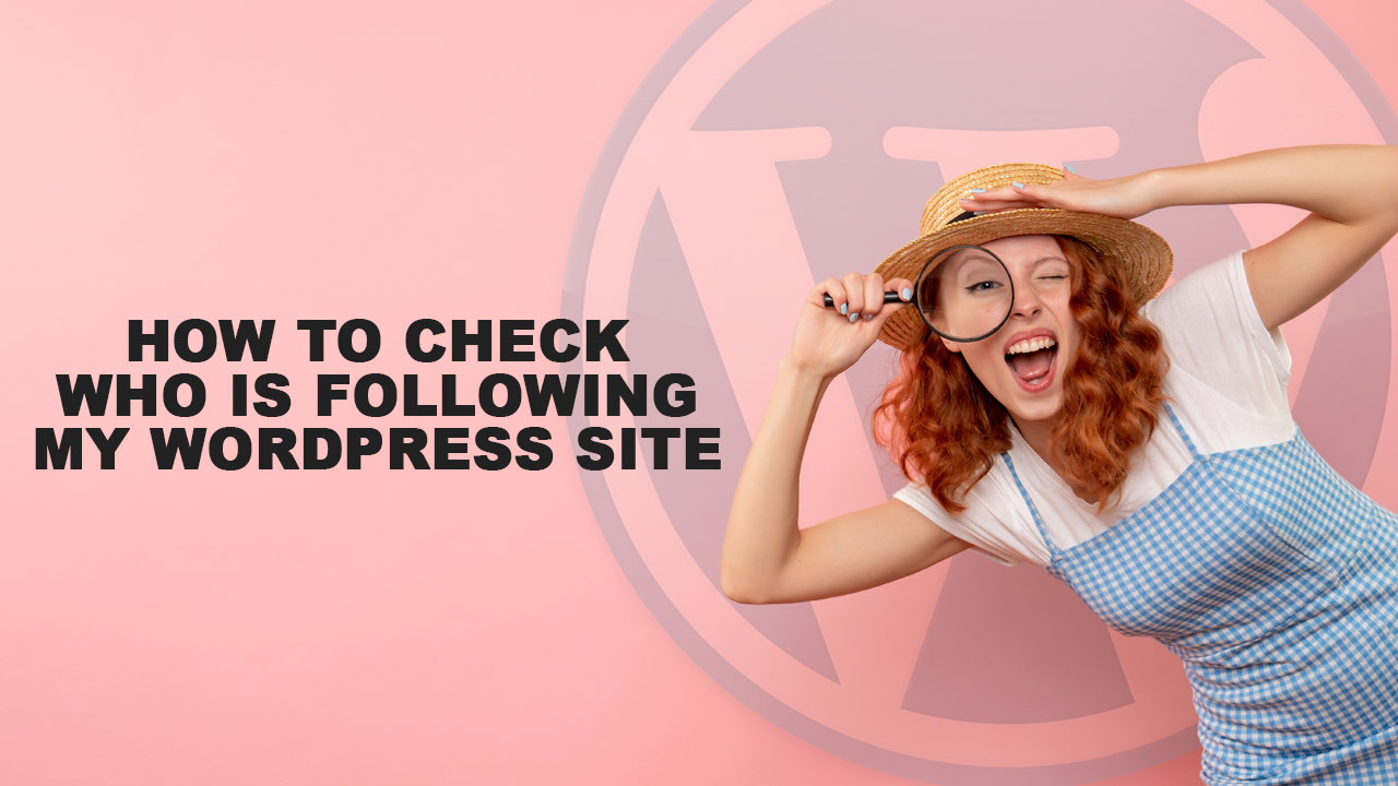 How To Check Who Is Following My WordPress Site